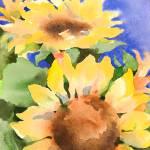 """""""Solar Blossoms"""" by SharonRMorgio"""