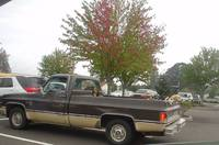 Dogs in the pick-up, St Helens, Oregon, USA