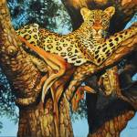 """Leopard in tree"" by SuzanneBarrettJustis"