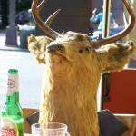 """Deer Beer"" by JohnEdwardThomasPhoto"