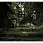 """forgotten torii"" by Dnaiele"