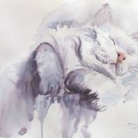 """Catnapping "" by Billie Crain"