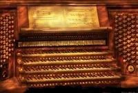 Musician - Organist - The Pipe Organ