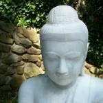 """""""Buddha V"""" by JohnEdwardThomasPhoto"""