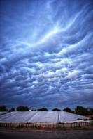More Mammatus Clouds Over Courtland