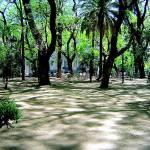 """""""Plaza San Martín"""" by ebald"""