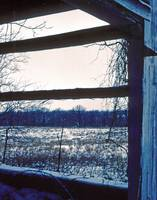Winter Barn Window