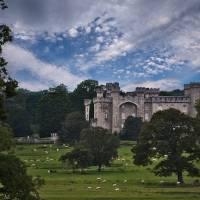 Bodelwyddan Castle Art Prints & Posters by Jeni Harney