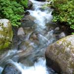 """""""Wallace Falls, Cascades WA"""" by RODADOD"""