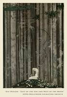 A Little Green Patch by Kay Nielsen