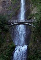 Oregon - Multnomah Falls near Columbia River Gorge