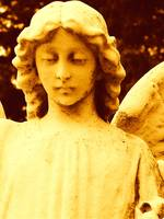 Sepia Angel