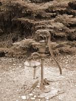 old sephia handpump in woods, rustic