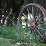 """Wagon Wheel"" by WashingtonPhoto"