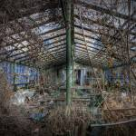 """School Greenhouse 1"" by timmsuess"