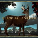 """BlackTailed Deer"" by mickwiggins"