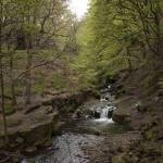 """Healey Dell Waterfall"" by Waterbabies_Photography"