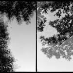 """two visions-diptych"" by davidcrawford"