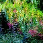 """Giverny spirit XXXIII"" by Woodsman"
