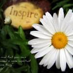 """""""Inspired Daisy"""" by iThinkMedia"""