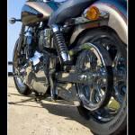 """Harley Davidson Dyna Low Rider"" by palmsrick"