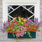 """Window Flower Box in pink,yellow,green and purple"" by mjphoto-graphics"