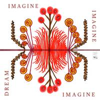 Imagine Dream
