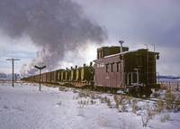 The Caboose passes as a freight heads for Cumbres.