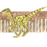 Green Raptor Art Prints & Posters by Jennifer Johnson