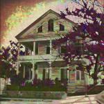 """House"" by EnjoyART"