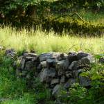 """Stone Wall"" by AvisNoelleDesigns"