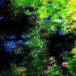 """Giverny spirit IX"" by Woodsman"