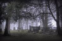 Misty Morning Graveyard