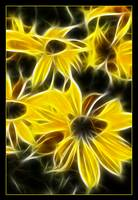Fractal Yellow Daisy