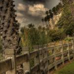 """Santa Monica Fence"" by earthlyimages"