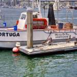"""""""Tortuga Boat HDR"""" by earthlyimages"""