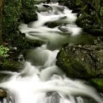 """Smoky Mountain Stream"" by suddath"