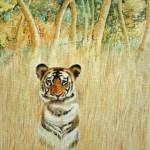 """Tiger in the long grass"" by AlanPickersgill"