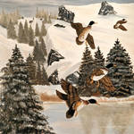 """Mallards In Flight"" by EMBlairArtwork"