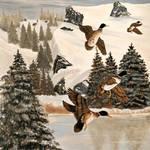 """Mallards In Flight"" by EMBlairArtwork"