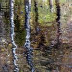 """Impressionist Reflection"" by EnchantedImages"
