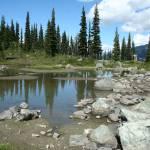 """Harmony Lake,Whistler"" by Whistlerphotogal"