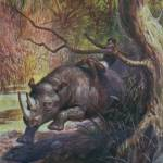 """""""African Rhino"""" by birthdaygifts"""