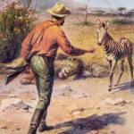 """African Hunter With Dead Lion & Baby Zebra"" by birthdaygifts"