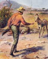 African Hunter With Dead Lion & Baby Zebra