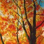 """Autumn Glow"" by CrystalWegner"