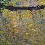 """Impressionist Reflection 2"" by EnchantedImages"