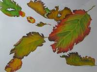 Autumn Hazel Leaves