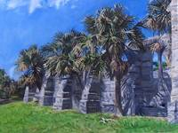 Unfinished Church with Palmettos