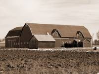 old sephia barn